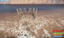 Ловушка для рыбы в Rust какую приманку использовать