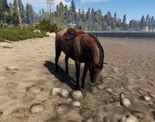 Как кормить лошадь в Rust